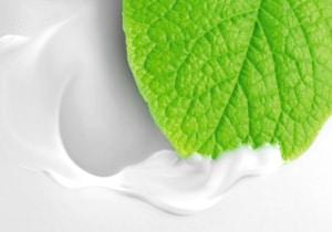 Produits - Ester oleochemicals